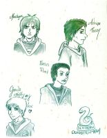 Slytherin Team by Dulcamarra