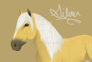 Silver. by katie0792