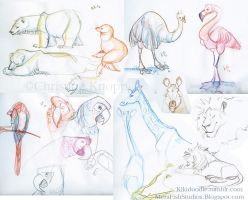 Zoo Sketches 6-23-12 by kiki-doodle
