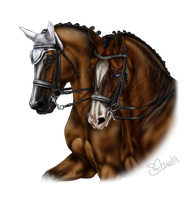 King and Prince by Tigra1988