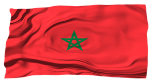 Flags of the World: Morocco by MrAngryDog