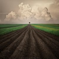 Whisper of the coming storm by Alshain4