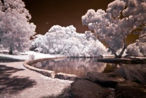 Infrared Pond by fazz1977