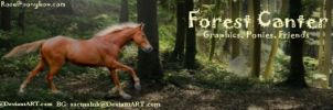 Forest Canter Banner by PintabianDreamer1222