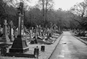 Putney Vale and Kensal Green Cemeteries 1 by Elfsire
