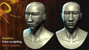 Mudbox sculpting tests by alixpoulot