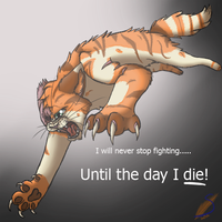 Brightheart never gives up by safirethedragon