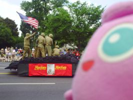 4th of July Parade D.C. by MarcoDelMarco