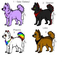 Puppy adoptables for sale C: by daunt-less