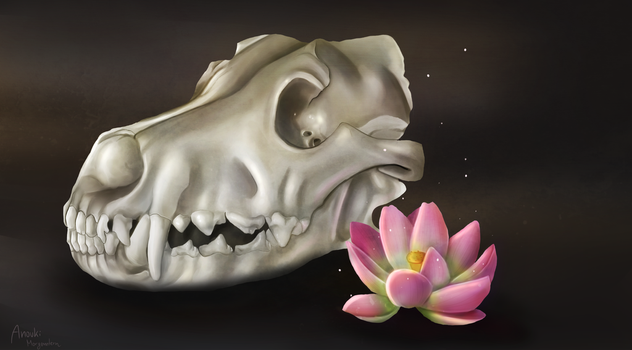 Skull and Lotus by anouki-morgenstern