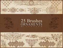 Ornaments Brushes - Icetaem by Icetaem