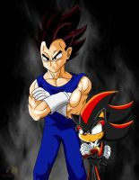 Vegeta and Shadow. by boy-wolf
