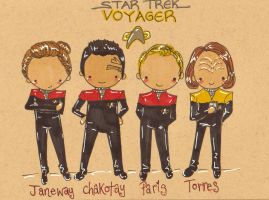 Star Trek Voyager (Trade) by Pinkie-Perfect