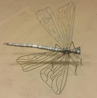 DragonFly (1) by LadyDracos