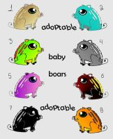 Baby boars by Renabl