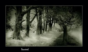 Haunted by ArwensGrace