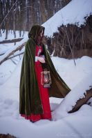 Wanderer of the winter forest I by onesummerago