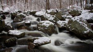 Snow by the Stream by brentonbiggs
