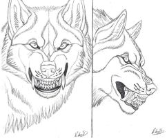werewolf snarl reference/line art by sioSIN