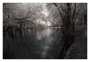 The Rivers Edge by BrianWolfe