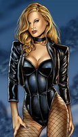 Black Canary: Looking at you by Maximus1900