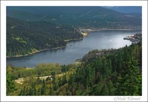 View from Above by Violet-Kleinert