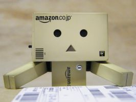 Danbo out of the box by badseyboy