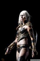 Dark Elf (Blade dancer) from Lineage II by Misstyque