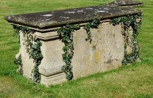 Ivy Sarcophagus 2 by fuguestock