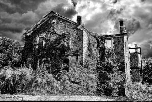 Abandoned Mental Asylum - Building Two by cjheery
