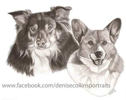 Another 2 dog portrait by FlyingFancy1