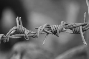 Barb Wire by Eternal-Polaroid