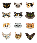 Cats a Plenty by ExoticDreamer