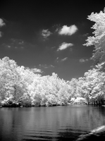 Whitewebbs Lake in Infrared by bmh1