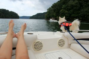Boating in Tennessee 13 by RiaBunnie