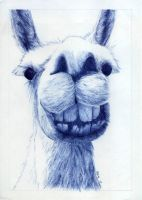 Just Smile - Biro by Flotter