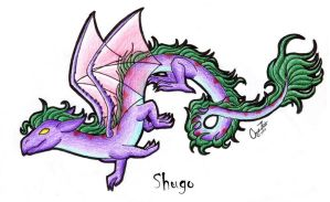 Shugo - Flying by Feathers-n-Fluff