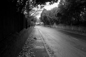 Road to Meads by jokehunter1998