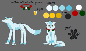 Wintergreen ref by AwkwardWox