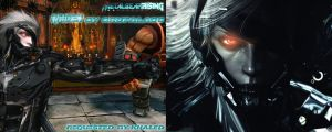 Raiden From Metal Gear Rising Revengeance by BrutalAce
