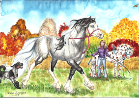 ANIMATED Autumn Groundwork training session by Coplins