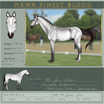 HEWA Finest San Diego by Birds-Sing-Stables