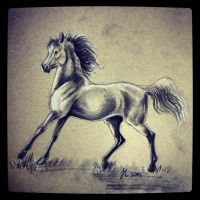 Charcoal by h0wr