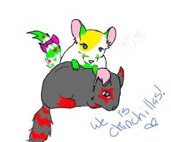 We are chinchillas xD by LilMissBlueJay