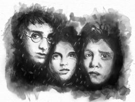 Harry Potter - The Trio by vivsters
