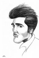 Elvis _The King by lufreesz