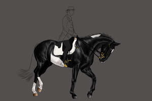 Stoffel dressage grand prix WIP by RvS-RiverineStables