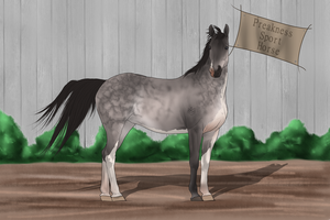 PSH Import 033 by RvS-RiverineStables