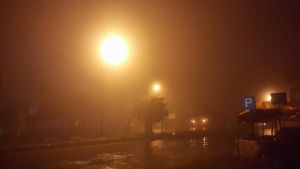 Fogy Night by sds49in