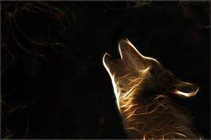 Fractal Wolf Wallpaper by PimArt